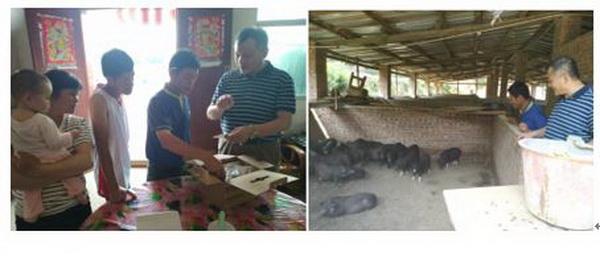 我校农村科技特派员团队为龙川县畜禽养殖提供技术支撑