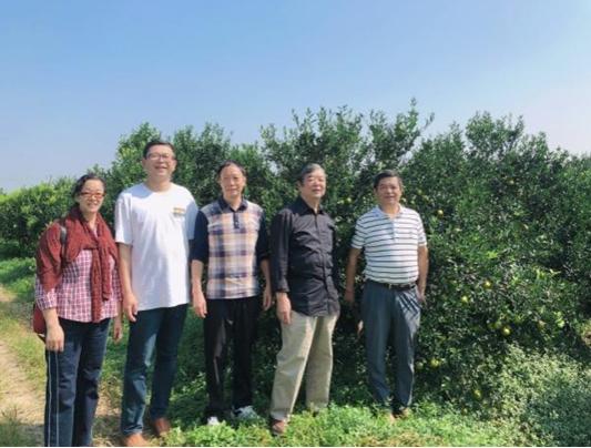 离退休党委组织赴新会区考察乡村振兴